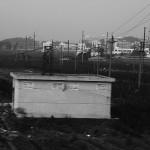 土地 从村庄到城市 (18)