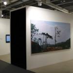 2011 Art Basel 42 (7)