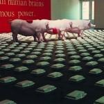 无题,做梦的猪