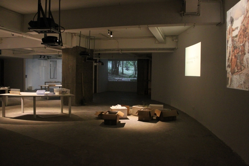 "Xu Tan: Questions, Soil and ""Socio-Botanic"", video of exhibition view"
