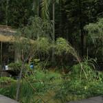Mirrored Gardens, Photo: Wen Peng, Courtesy of Mirrored Gardens Archive